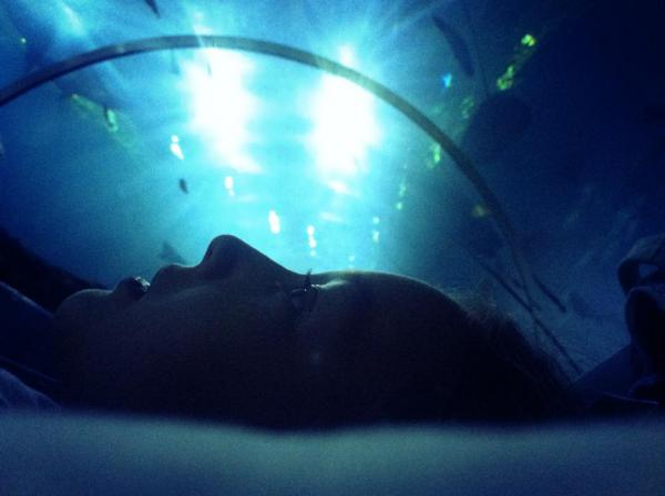 """Sleeping with the sharks"" -Photo partagée"