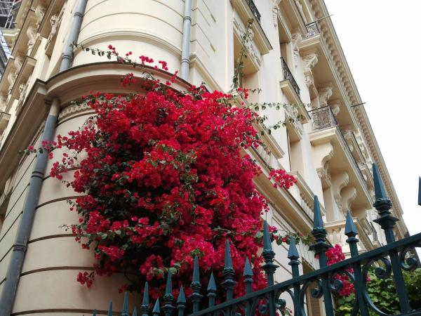 Un coin de façade à Nice